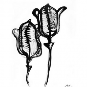 Blomst 4
