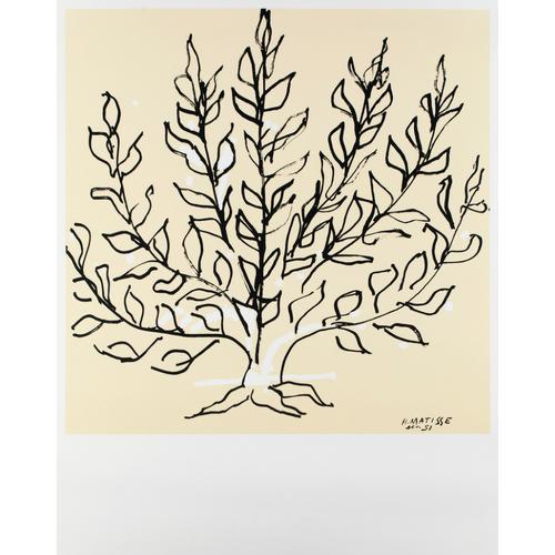 Cool Galerie Maeght: Matisse – Plart SR85